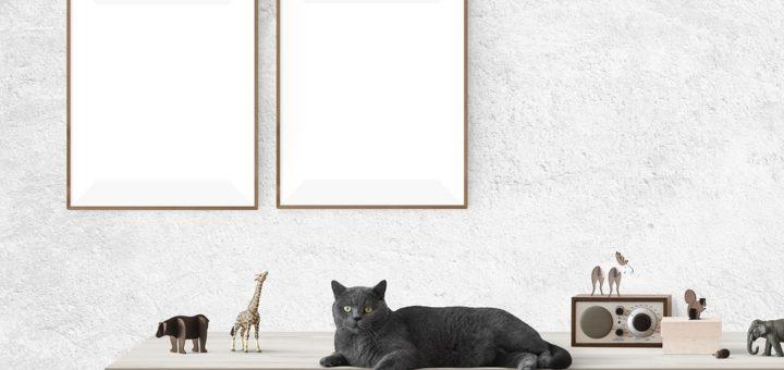 idealnie pasujący plakat w salonie